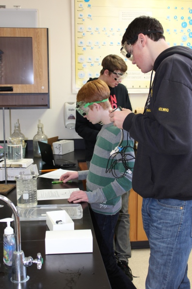 Chemistry students working on a lab in Mrs. Capperino's class.